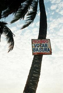 cartel en una palmera que dice prohibido votar basura. Está tomado en Colombia, donde botar -con b- es tirar, pero se equivocaron de ortografía. Pero es lo que quiero decir